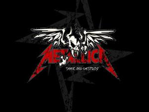 Metallica - Seek & Destroy