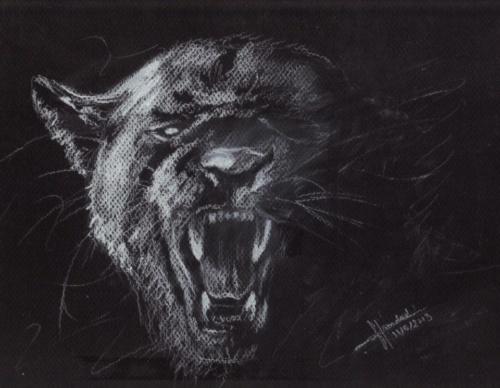 Nature Fauve (Back Panther)