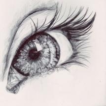 Figure Study - Eye